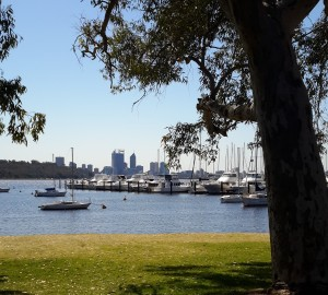 One of the many beautiful views of the swan river from the restaurant.
