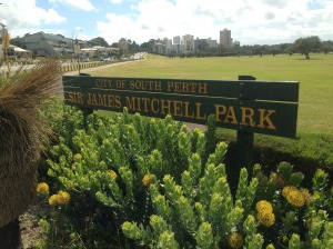 Sir James Mitchell Park is one of the areas likely to be affected by development