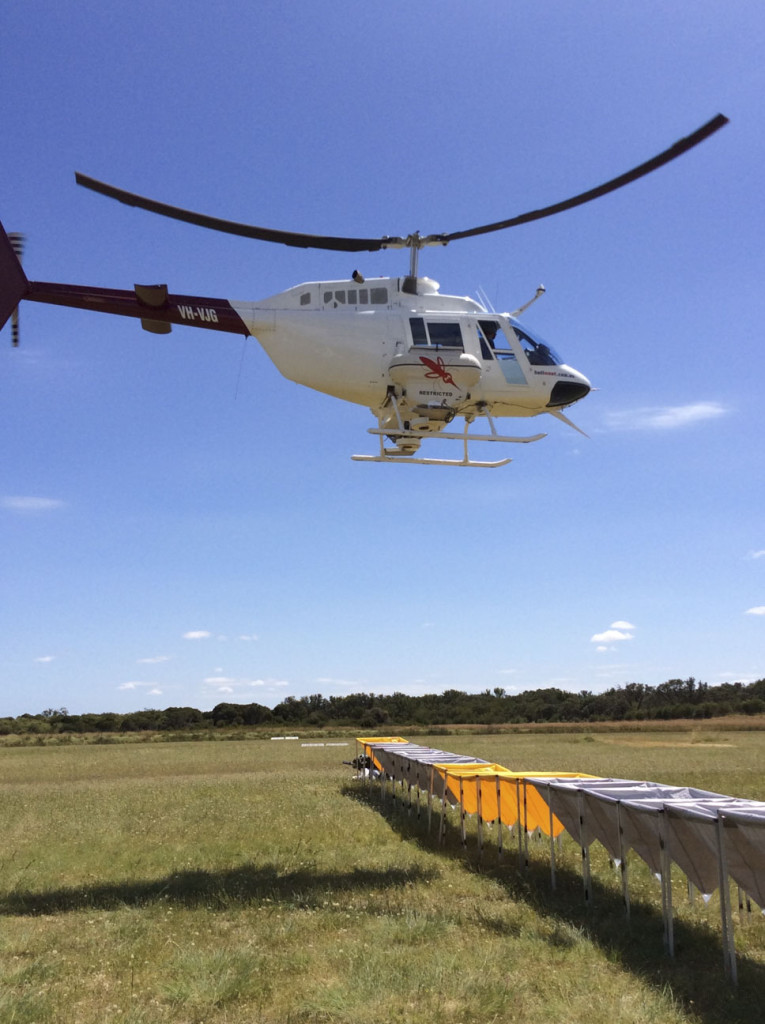 A helicopter used in spraying mosquito larvae in water around Mandurah. Courtesy of Department of Health