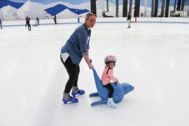 Ice Arena Upgrade Inspires Perth