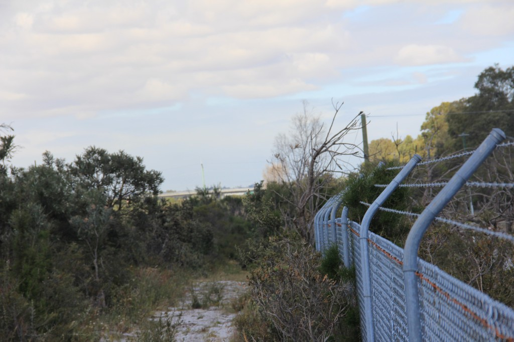 This chain link fence will be the only barrier between the wetlands and the industrial area, which Hans Lambers believes is unacceptable.