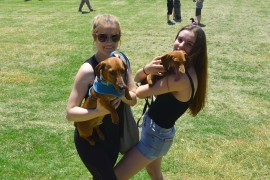 Perth Dachshunds party it up to raise funds and awareness