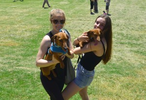Shara Langley and Tegan Allum with their pooches Cooper and Slinky
