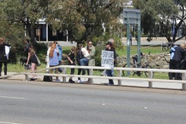 STOPPING LIVE EXPORTS WITH SOCIAL MEDIA