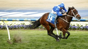Winx running with his rider.