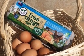Free to choose free range eggs