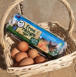 Clear rules on free range eggs.  Photo - Beth Smith