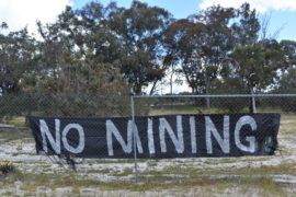 Claims a planned Wellard sand mine threatens native wildlife